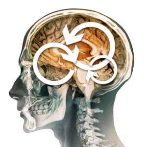 Rehab refresh brains
